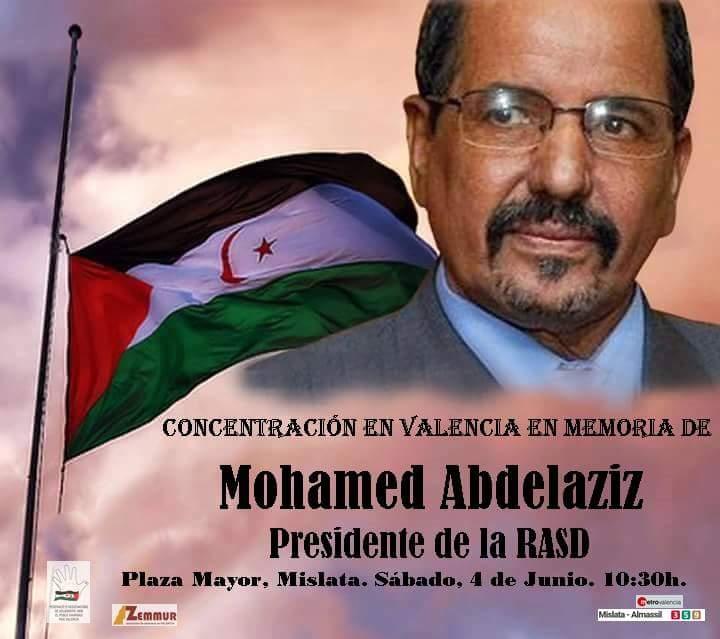Mohamed Abdelaziz 01